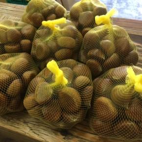 毎年ご好評いただいている首里 うえのいださんの自然栽培(奥様のご実家の大分産)の栗が入荷しました!  まだまだ暑い沖縄ですが、秋の味覚をお楽しみ下さい。
