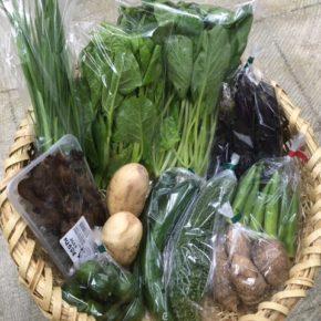 【第83回目】わが家のハルラボ商店『お野菜おまかせBOX』は台風の影響を避けるため先週金曜日に発送いたしました。今回の内容は自然栽培のれんこん・丸オクラ・にら・シークワーサー、  無農薬栽培の里芋・ツルムラサキ・ゴーヤー・なす・きゅうり・小松菜・きくらげをお送り致しました。