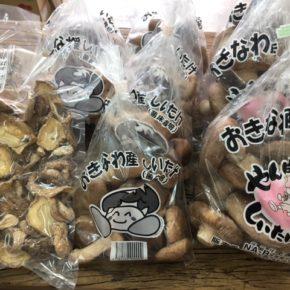 やんばる産おがくずで菌床栽培された乾燥椎茸・生椎茸が入荷しました!