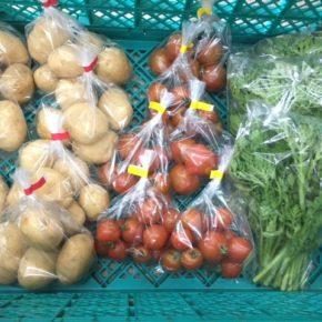 うるま市 玉城勉さん、北中城村 ソルファコミュニティさん、八重瀬町 島袋悟さんの自然栽培の野菜が入荷しました!