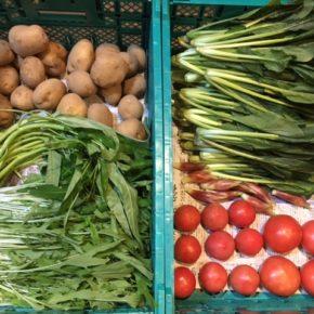 やんばるから森さんの無農薬栽培の野菜が入荷しました!  今回はジャガイモ・小松菜・水菜・空芯菜・トマト・ミョウガが入荷しました。