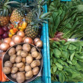 やんばるから森さんの無農薬栽培の野菜が入荷しました!  今回は玉ねぎ・ジャガイモ・人参・小松菜・ちんげん菜・ミニパプリカ・ミョウガ・ピーチパインが入荷です。
