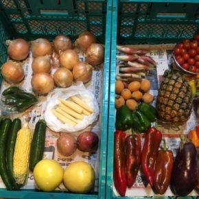やんばるから森さんの無農薬栽培の野菜が入荷しました!  本日はミニトマト・びわ・パッションフルーツ・ピーチパイン・ミョウガ・ズッキーニ・ヤングコーン・玉ねぎなど入荷しました。