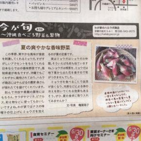 琉球新報副読紙「レキオ」にて、ミニコラム「今が旬~沖縄食べごろ野菜&果物」の連載中! 毎月第4木曜日に旬な県産の野菜や果物をご紹介しています。