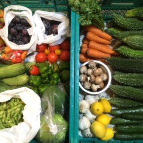 やんばるから森さんの無農薬栽培の野菜が入荷しました! 本日はゴーヤー・レモン・パパイヤ・にんにく・きゅうり・パクチー・人参・マッシュルーム・ミニパプリカ・小玉とマト・ピーマン・枝豆・へちま・プラムが入荷です。