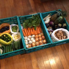やんばるから森さんの無農薬栽培の野菜が入荷しました! 本日は玉ねぎ・人参・にんにく・ちんげん菜・枝豆・ゴーヤー・きゅうり・ヤングコーン・なす・米茄子・原木椎茸・ピーチパイン・シークワーサーが入荷です。