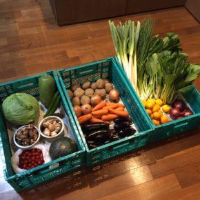 やんばるから森さんの有機無農薬の野菜が入荷しました! ミニトマト・玉ねぎ・白ネギ・万能ねぎ・みかん・人参・南瓜・椎茸・マッシュルーム・トマト・赤玉ねぎ・きゃべつ・長なす・中長なす・じゃがいも・きゅうり・小松菜です。