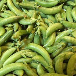 国頭村 森岡いちご農園さんの無農薬・無肥料・露地栽培のいちごと一緒にスナップエンドウが入荷しました!