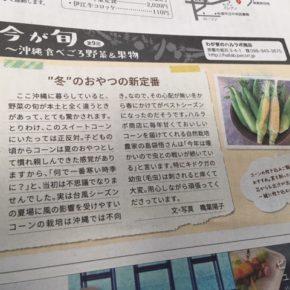 先月の琉球新報レキオにて紹介させていただいた、八重瀬町 島袋さんの自然栽培のとうもろこしが入荷しました!