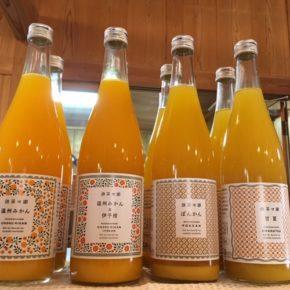 愛媛県 無茶々園の柑橘ジュースが入荷しました! 味は温州みかん、温州みかん&伊予柑、ぽんかん、甘夏の4種類です。