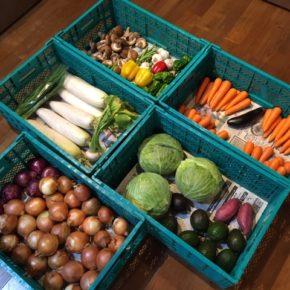 台風10号の影響もあり全体的に野菜が少ない中、やんばるから森さんが無農薬野菜を出荷してくれています。本日はキャベツ・アボカド・大根・かぶ・にら・パプリカ・ピーマン・さつまいも・玉ねぎ・赤玉ねぎ・人参・マッシュルーム・しいたけ・インゲン・茗荷・なす・ニンニクが入荷です。