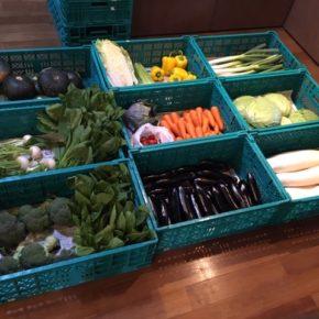 やんばるから森さんの無農薬野菜、大根・キャベツ・ブロッコリー・サニーレタス・セロリ・トマト・ミニトマト・パプリカ・きゅうり・紫キャベツ・白菜・小松菜・青梗菜・かぶ・白ネギ・なす・にら・インゲン・人参・じゃがいも・玉ねぎ・ニンニク・栗かぼちゃ・サルナシ・フィージョアが入荷しました。