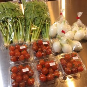 北中城村 ソルファコミュニティさんの自然栽培のミニトマト・セロリ・新玉ねぎが入荷しました。