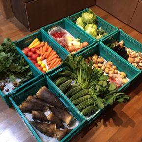 やんばるから森さんの無農薬栽培のタケノコ・キャベツ・小松菜・ほうれん草・大根・トマト・ミニトマト・なす・きゅうり・ゴーヤー・ブロッコリー・にんにく・人参・金美人参・じゃがいも・玉ねぎ・椎茸・レモン・いちごが入荷しました。