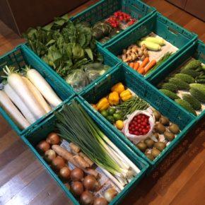 やんばるから森さんの無農薬栽培のイチゴ!今シーズン最後の入荷かもしれません。ほか、サルナシ(在来キウイ)・レモン・ライム・ブロッコリー・大根・長芋・白ネギ・玉ねぎ・ほうれん草・大葉・パプリコ・インゲン・ミニトマト・万能ねぎ・にら・生姜・トウモロコシ・ゴーヤー・きゅうり・人参・イタリアンパセリが入荷しました。