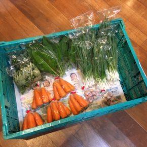 北中城村 ソルファコミュニティさんの自然栽培の初金木・島ニンニク・ヨモギ・ニガナ・人参が入荷しました!
