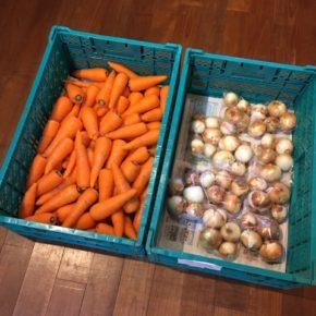 八重瀬町 島袋悟さんの自然栽培の人参、南風原町 いもり屋さんの有機無農薬栽培の新玉ねぎが入荷しました!