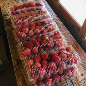 いよいよ県産無農薬栽培の茘枝(ライチ)のシーズンがやってきました! 梅雨時期の収穫は晴れている時しか出来ず、シーズンは短いのでお早めにどうぞ〜。 お電話頂ければおとり置きも致します。☎098-943-9575