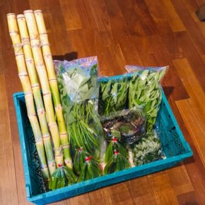 北中城村 ソルファコミュニティさんの自然栽培のカンダバー・ミドリカズラ・エンサイ・ヨモギ・角オクラ・ウージが入荷しました!