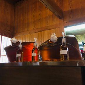 ハルラボでお酢の概念が変わります!江戸時代から受け継がれてきた伝統製法で醸造した100%天然酢、中野酢。 その中でも人気の純米酢と甘酢寿酢が入荷しました。 三重の熊野古道にある蔵にて静地発酵法の木桶で100日前後ゆっくり発酵し、その後1〜3年じっくり熟成されています。 ご試飲頂き必要な分だけ量り売りでお分けしています。普段お使いのお酢の瓶などお持ち頂くか、こちらで瓶のご用意もしています。