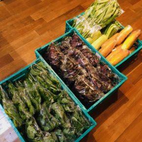 今帰仁村 片岡農園さんの無農薬栽培のサラダナーベラー・うりずん豆・赤じそ・青じそ・ウンチェバー・モーウィ・丸オクラ・ツルムラサキ・モロヘイヤが入荷しました!
