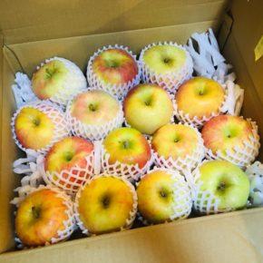 お待たせしました!毎年恒例、山口県からもぎたての低農薬りんごが入荷しました!!今回は「秋映」「しなのスウィート」「秋陽」「紅将軍」。どれも味が乗っていて美味しいですよ。